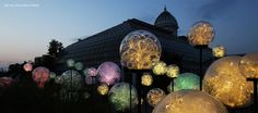 Whizz Pops, Bruce Munro. Photo by Mark Pickthall. #BruceMunroLIGHT at Franklin Park Conservatory