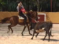 PeninsulaTaurina.com : Diego López ensaya su tauromaquia en La Ceiba