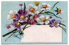 Vintage Clip Art - Pretty Floral Label - Tag - The Graphics Fairy