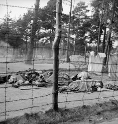 Dying women huddle on the ground behind the barbed-wire enclosure at Bergen-Belsen, 1945. World War Two