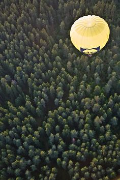 There are several ways in which hot air balloons offer a unique flying experience over the more common means of flying. Hot Air Balloon, Balloons, Fruit, Day, Globes, Balloon, Hot Air Balloons