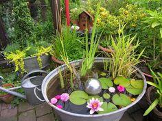 Dieser Dekotrend für den Garten kommt wieder in Mode: Mini-Teiche in einem Behälter oder Eimer! - DIY Bastelideen
