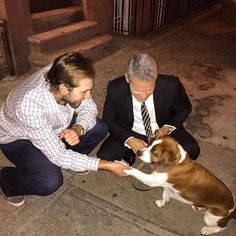 Andy Cohen's dog Wacha actually meets Michael Wacha, adorableness ensues