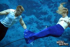 Happy Friday from the Prince and #TheLittleMermaid. Have a safe and wonderful weekend! #TGIF #LoveFL #LoveWeeki