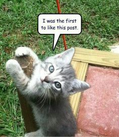 Like this post!!