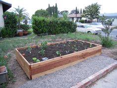 cool Garden 1 / http://www.everydaygardening.net/garden-1/
