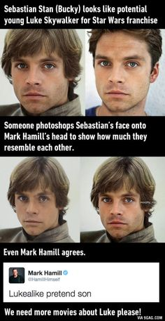 Sebastian Stan looks just like a young Luke Skywalker. Seriously. This is unsettling.<<If they make a (young)  Luke spin-off Sebastian MUST play luke