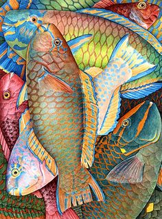 all the colors - fish - illustration - Charlotte Knox Illustration Agency, Fish Illustration, Colorful Fish, Tropical Fish, Wal Art, Fish Drawings, Kunst Poster, Art Textile, Sea Fish