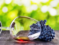 Bunch of grapes and glass of red wine lying on a black wooden ta Wine Tasting, Royalty Free Images, Red Wine, Fruit, Drinks, Pantry, Glass, Drinking, Pantry Room