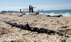 'It'll take decades to clean': oil spill ravages east Mediterranean | Israel | The Guardian Clean Beach, Beach Look, Large Waves, Oil Tanker, Oil Spill, Winter Sun, Nature Reserve, Weekend Is Over, The Guardian