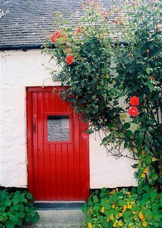 The Colors of Ireland - Avoca, Ireland Copyright: Terez Anon