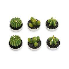 """""""Cactus Candle, Matériau cire + récipient en étain, Quantité 6 pièces, Élément Couleur Vert, Temps de gravure 30-40 minutes, Diamètre Approx. 4.2cm / 1.6 """""""", Hauteur 3.7-4.2cm / 1.5-1.6 """""""", Poids net 0.12kg / 4.2oz, Paquet 6 * Bougies (3 styl"""