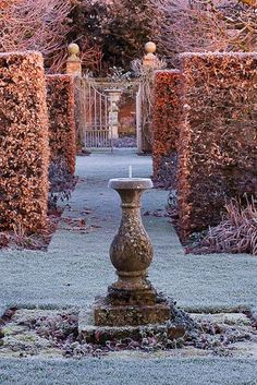 A winter garden ~ Clive Nichols Photography