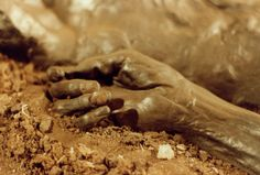 Bog Bodies|Ancient Mummies from the Past