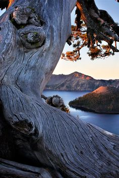 For pure visual splendor, it's hard to beat Crater Lake's brilliant blue water and 2,000-foot cliffs.