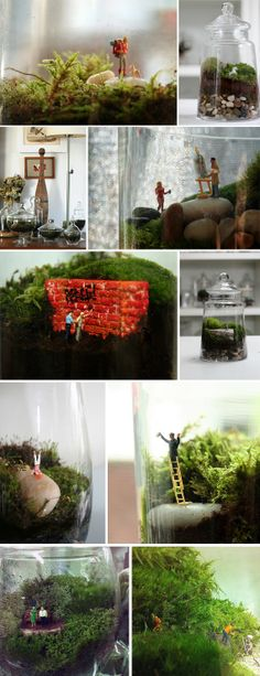Twig Terrariums. Cool. :)