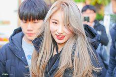 Fandom, Kpop Girl Groups, Kpop Girls, Hair Dye Colors, Japanese Girl Group, 3 In One, The Wiz, Me As A Girlfriend, Dyed Hair