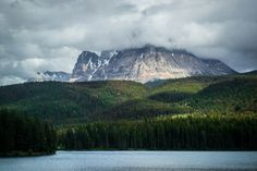 I shot this from a moving train: Jasper National Park Canada. [160x1067][OC]