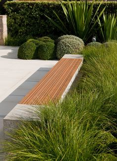 Grasses can be formal in the landscape too! Plant profiles www.bluedale.com.... Buy online www.bluedaleplant... Visit today!