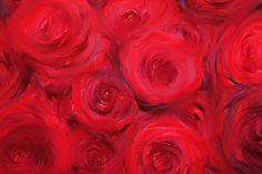 Bunch of roses - chris janisch