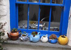 teapots teapots teapots: Port Isaac window cill