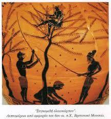 ΝΗΠΙΑΓΩΓΟΣ ΑΠΟ ...ΧΟΜΠΥ: ΕΛΙΑ Simple Minds, Olive Tree, Ancient Greece, Olive Oil, History, Drawings, Blog, Crafts, Environmental Education