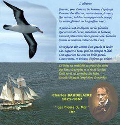 L'albatros de Charles Baudelaire
