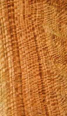 Wandoo flitch - Western Austalian species of wood that is a member of the Eucalyptus family