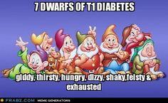 7 dwarfs of type 1 diabetes