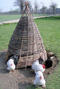 I wish I had one like this for my chickens. Awesome!
