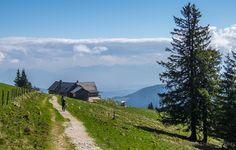 Berglauf auf die Stoißer Alm - Berchtesgadener Land Blog