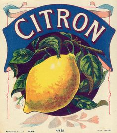 étiquettes boissons:  77 lovely labels