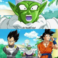 Goku, Vegeta, and Piccolo