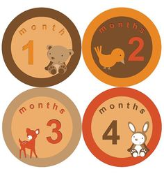 Monthly Baby Onesie Stickers Woodland Forest Owls by SnappitySnap, $9.00