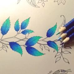 ⓑⓞⓐ ⓝⓞⓘⓣⓔ pessoal!! Sexta-feira é dia de #combinandocoresJSI amei muito a de hoje!!! AZUL ESCURO➕AZUL CLARO➕VERDE ÀGUA Lindo!!! Hoje recebi essa caixa e outros produtos da Faber Castell esses lápis são os da linha Art Grip Aquarelle.