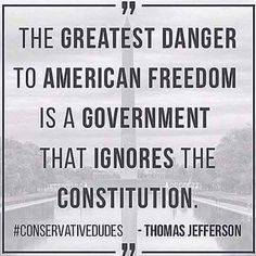 greatest danger to American Freedom is a Government that ignores the Constitution.The greatest danger to American Freedom is a Government that ignores the Constitution. Great Quotes, Me Quotes, Inspirational Quotes, Famous Quotes, Wisdom Quotes, Motivational, American Freedom, American Pride, American Flag