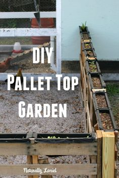 Diy Pallet Top Garden: Using The Most Of Your Space To Create A Garden Friendly…