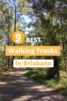 Best walking tracks in Brisbane! Here are my favourite places to go for a walk in Brissy. From bush walks to pretyy parks and gardens. Australia Travel Guide, Australia Honeymoon, Travel Themes, Travel Destinations, Travel Guides, Travel Tips, New Zealand Travel, Ultimate Travel, Future Travel
