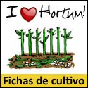 Aprende a cultivar verduras y hortalizas con EcoHortum!  http://ecohortum.com/fichas-de-cultivo-para-tu-huerto-en-casa/