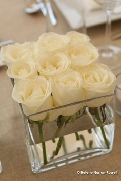 The perfect wedding centerpiece -- Dollar Store square vases with 9 white roses each.