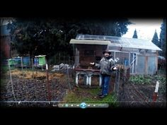 Permaculture Tip of the Day - Suburban Chicken System - School of Permaculture