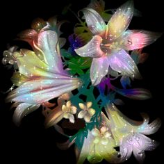 flowers animation images   Flowers animated gifs by Montserrat