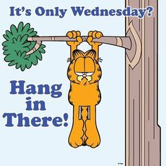 Nothing ruins a Friday like realizing it's only Wednesday. Garfield Pictures, Garfield Quotes, Garfield Cartoon, Garfield And Odie, Garfield Comics, Happy Day Quotes, Happy Wednesday Quotes, Wednesday Humor, Good Night Quotes