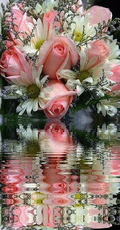 Gardens Discover gif Prayers Please - HSN Community Beautiful Rose Flowers Flowers Gif Beautiful Flower Arrangements Romantic Flowers Beautiful Love Pictures Beautiful Gif Love Images Good Morning Flowers Good Morning Gif