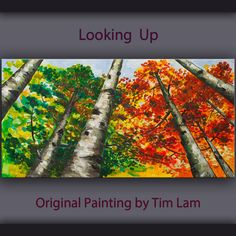 Original Painting Looking Up Forest art, huge mural oil painting Autumn Aspen Tree by Tim Lam 48x24x1.5 by elseart on Etsy