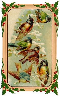Holiday Birds Image - Sweet!   Featured above is a sweet picture of some Birds perched on a Snowy Branch. Surrounding the Birds is a lovely Holly Berry Frame! This would be great for your Handmade Holiday Card Projects or Scrapbooking projects, or perhaps to use as a pretty Christmas Gift Tag!   The Graphics Fairy