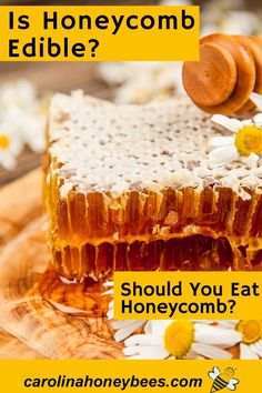 Can You Eat Honeycomb, Honeycomb Raw, Eating Raw, Healthy Eating, Cooking With Honey, Honey Recipes, Raw Honey, Baked Goods, Favorite Recipes