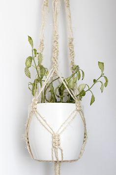 DIY Macrame plant hanger – u p g r a d e s i g n Macrame Plant Hanger Patterns, Macrame Wall Hanger, Macrame Hanging Planter, Macrame Plant Holder, Macrame Patterns, Hanging Planters, Rope Plant Hanger, Diy Gifts For Mothers, Mini Roses