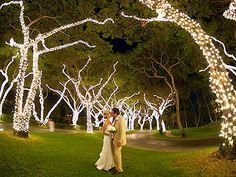 Grand Wailea Resort and Spa Wailea, Maui Weddings Hawaii Wedding Venues 96753