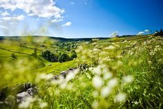 The North Pennines Area of Outstanding Natural Beauty